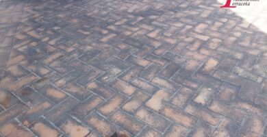 limpiar moho suelo barro