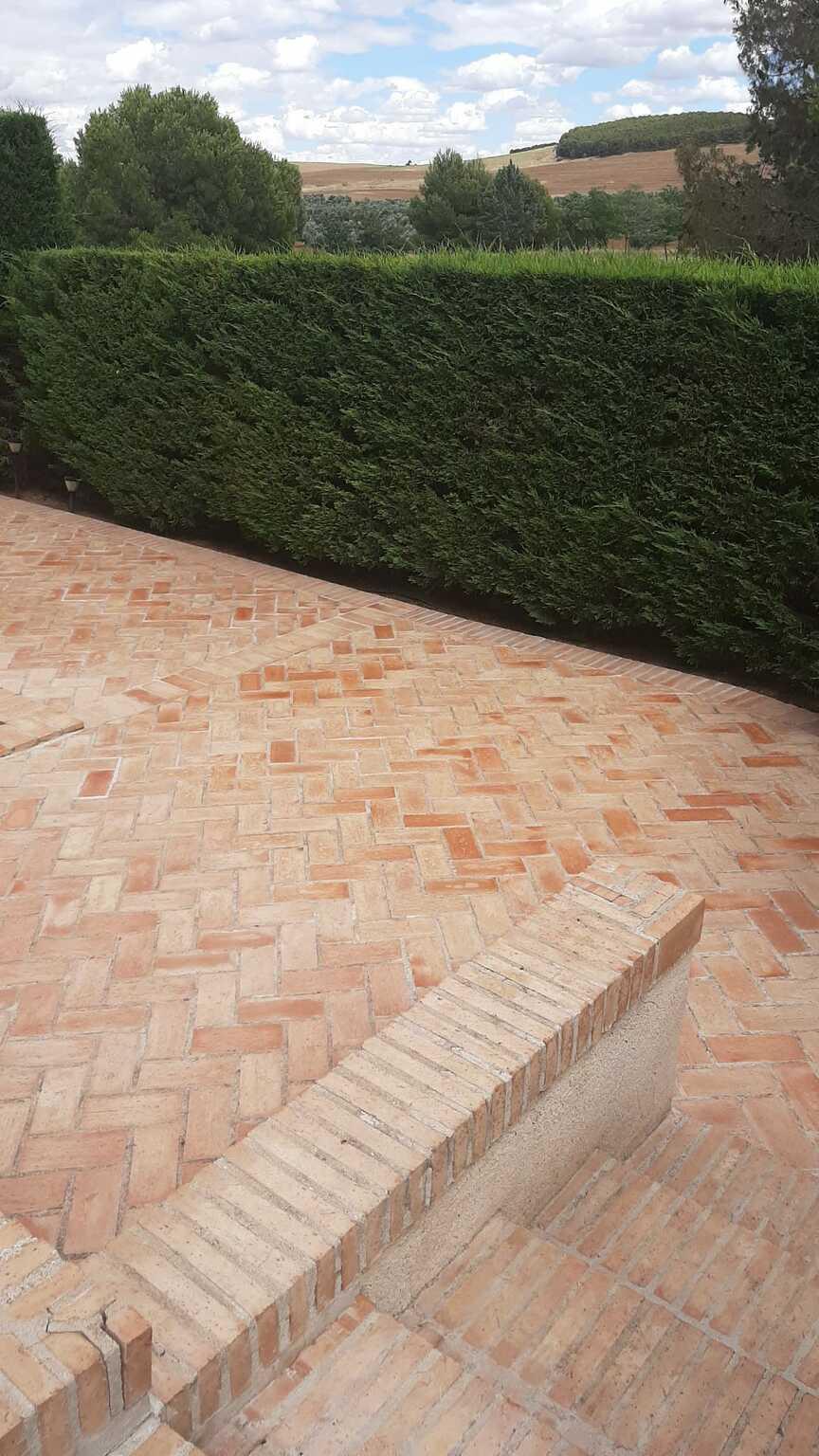 Resultado final tras eliminación del moho y tratamiento del suelo de barro 02
