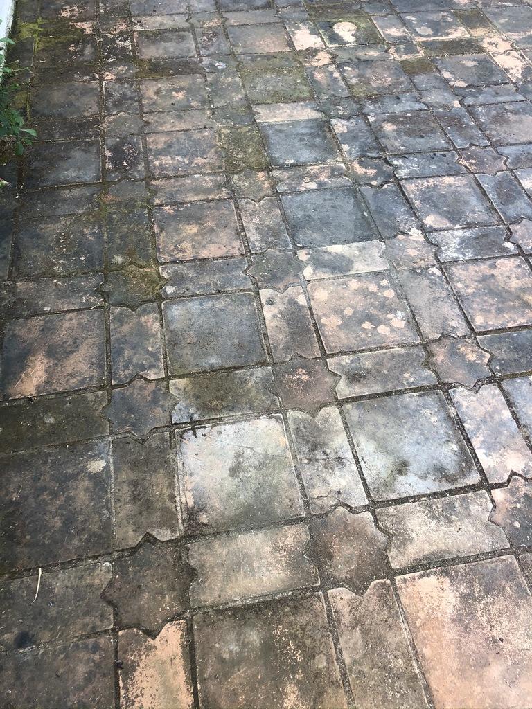 Estado-incial-de-suelo-de-barro-exterior-con-moho-incrustado-06